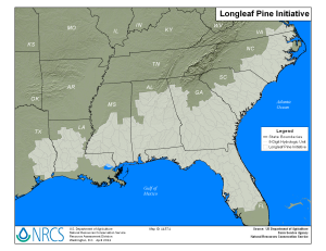 Map of Longleaf Pine Initiative in the Southeast. (Map courtesy of USDA Natural Resources Conservation Service)